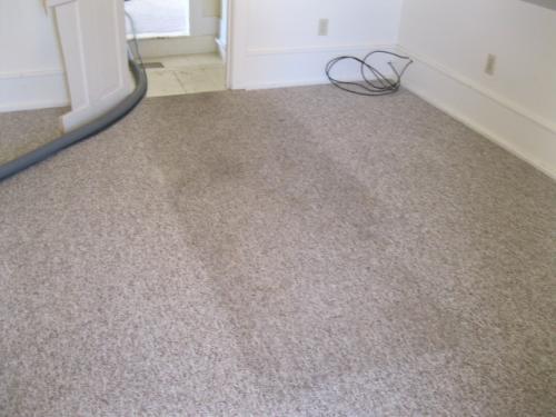 clean house carpet